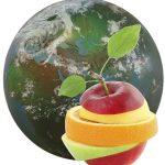 Efectele globalizǎrii asupra practicilor alimentare