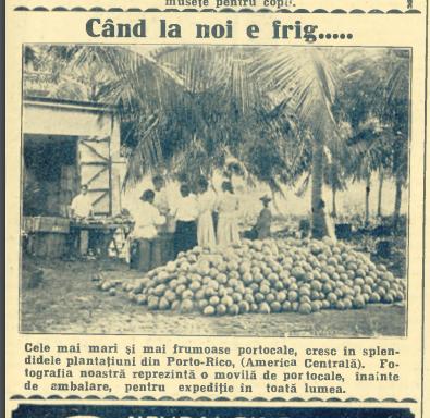 articol din Realitatea Iustrată 15 decembrie 1928